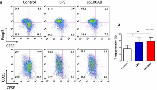 CD4+CD25+Foxp3+ regulatory T (Treg) cell generation by synthetic S100A8. Naïve T cells (CD4+CD25−Foxp3−) were isolated from the peripheral blood of healthy volunteers and stimulated with anti-CD3 and anti-CD28 monoclonal antibodies in the presence of 100 U/ml recombinant interleukin-2 (rIL-2) and/or synthetic peptides for 5 days. To monitor the cell proliferation, naïve T cells were stained with the fluorescent dye carboxyfluorescein succinimidyl ester (CFSE). Treg cell generation was evaluated by FACS analysis. a A representative result of FACS profile of Treg generation by LPS and sS100A8. b Significantly increased Treg generation by LPS and sS100A8 obtained by seven separate experiments with different volunteers' DC each. Significant differences were determined using the one-way ANOVA (*P < 0.05, **P < 0.01, n = 5)