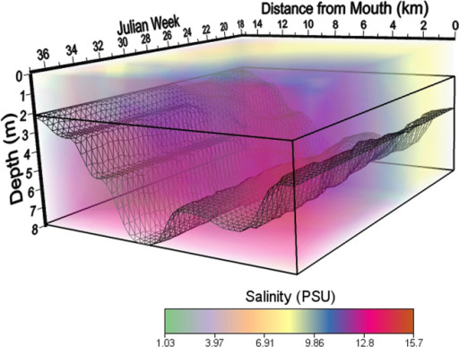 Spatiotemporal model of salinity in the South River during 2010.
