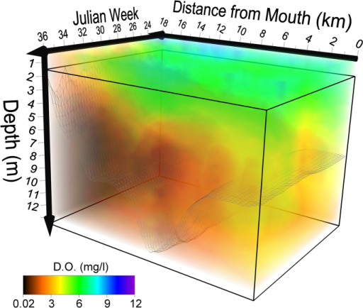 Spatiotemporal model of of hypoxia in the Severn River 2010.
