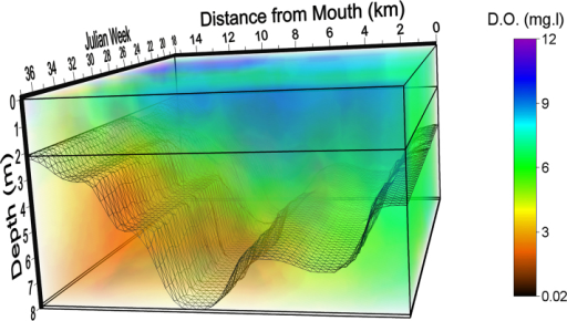 Spatiotemporal model of hypoxia in the South River 2010.