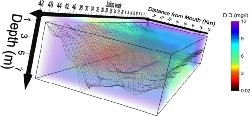 Spatiotemporal model of hypoxia in the South River 2012.