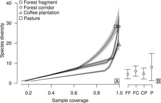 Sample coverage-based species accumulation curve of dung beetle sampled in forest fragment, forest corridor, coffee plantation, and pasture of 12 landscapes in Lavras, Brazil (A).Estimated average species richness and standard deviation at the same sample coverage (77.6%) in FF, forest fragment; FC, forest corridor; CP, coffee plantation and P, pasture (B). The shaded area indicates the 95% confidence interval and the dashed line represents extrapolation data.