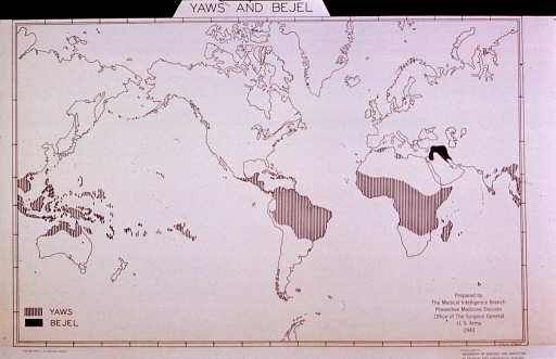 <p>Map showing distribution of yaws and bejel in the world.</p>