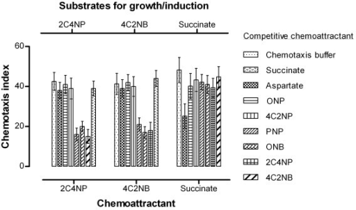 Chemotaxis of Burkholderia sp. strain SJ98 towards 2C4NP, 4C2NB and succinate in the presence of other chemicals as competitive attractant. Cells of strain SJ98 grown on 2C4NP, 4C2NB or succinate were subjected to capillary assays in the presence of a second capillary filled with a test chemical (shown in the figure). Values are presented as arithmetic means and error bars indicate standard deviations based on three independent replicates.