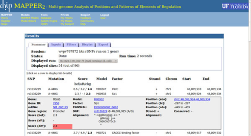 The page displaying the results of an rSNP-MAPPER run. The top part of the window displays run parameters and allows the user to control how results are displayed and exported. The bottom part contains the hit pairs produced by the program, one per line. Information shown for each hit pair includes the SNP identifier and position, the scores related to the two SNP alleles and their difference, the model that produced the predicted TFBS and the corresponding factor name, and the genomic coordinates of the TFBS.