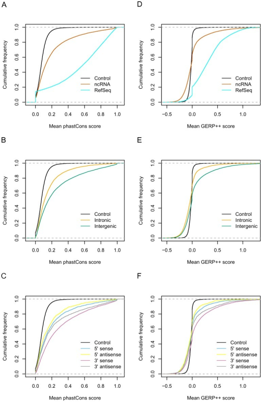 Sequence conservation analysis of ncRNAs.(A, B & C) are based on phastCons score. (D, E & F) are based on GERP++ score. The control line is based on a similar number of randomly selected non-transcribed genomic regions. A & D – ncRNAs compared to RefSeqs, B & E – intergenic ncRNAs compared to intronic and C& F – 5′ vs 3′ ncRNAs and transcriptional orientation with respect to nearest neighbour genes.
