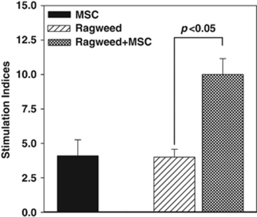 Proliferative response of peripheral blood mononuclear cells (PBMCs) from allergic rhinitis (AR) to ragweed in the presence or absence of mesenchymal stem cells (MSCs). PBMCs were isolated the peripheral blood of subjects with AR and sensitivity to ragweed. The PBMCs were challenged with 5 μl ml−1 ragweed, in the presence or absence of MSCs. After 48 h, the cultures were assessed for proliferation, based on the incorporation of tritiated thymidine. The proliferation is presented as stimulation index (SI), which was calculated as the disintegration per minute (d.p.m.) of the experimental point/d.p.m. of unstimulated PBMCs alone. The results (mean±s.d.) are presented for six donors (Table 1: S5–S8, S12, S13). Each AR subject was studied with MSCs from a different donor.