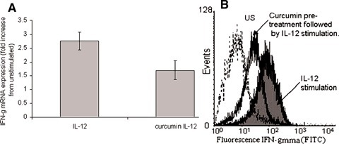 Modulation of IL-12 induced IFN-γ by curcumin. Quantitative real-time PCR and flow cytometry were used to assess IFN-γ mRNA and protein expression, respectively, in PHA/IL-2 T cell blasts. IL-12 (100 ng/ml) increased IFN-g production, however, pre-treatment of these cells with curcumin (20 μg/ml) reduced this induction (A). IL-12 stimulation increased IFN-γprotein expression (shaded curve) compared to unstimulated cells (US), an induction that was reduced by prior treatment of the cells with curcumin (20 μg/ml) (unshaded curve) (B).