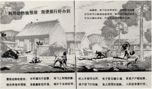 Chinese flyer, distributed to country people with the intention of explaining the behaviour of animals prior to earthquakes, which should be observed.