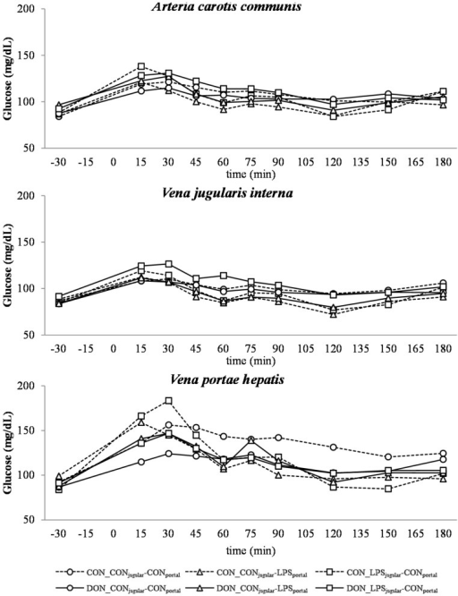 Effect of chronic enteral Fusarium toxin deoxynivalenol (DON) exposure and pre- or post-hepatic E. coli lipopolysaccharide (LPS) infusion on arterial, jugular or portal blood glucose in pigs. Reference value: 70–115 mg/dL in venous blood [26]. Barrows were either fed a DON contaminated ration (4.59 mg/kg feed) or control feed during 29 days. Infusion groups were divided as follows: pre-hepatic LPS infusion (CON_CONjugular-LPSportal, n = 7 and DON_CONjugular-LPSportal, n = 6), post-hepatic LPS infusion (CON_LPSjugular-CONportal, n = 8 and DON_LPSjugular-CONportal, n = 6), and control infusion (CON_CONjugular-CONportal, n = 7 and DON_CONjugular-CONportal, n = 7). Infusion from time 0 until 60 min with 7.5 µg LPS/kg BW in 0.9% saline. Feed was offered during 15 min prior to infusion start. LSMeans. PSEM = 1.75. Significance: Group (G): p = 0.28; Catheter (C): p ≤ 0.001; Time (T): p ≤ 0.001; G × C × T: p ≤ 0.001. Table illustrates differences between DON- and CON-fed control-infused groups at different times. T = trend (p ≤ 0.10).