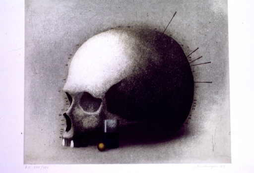 <p>Gray/green background with the profile of a human skull from the top of the skull to the upper teeth. Numbers in small print are placed along the skull and a beaker and small orange ball shaped item are next to the skull.</p>