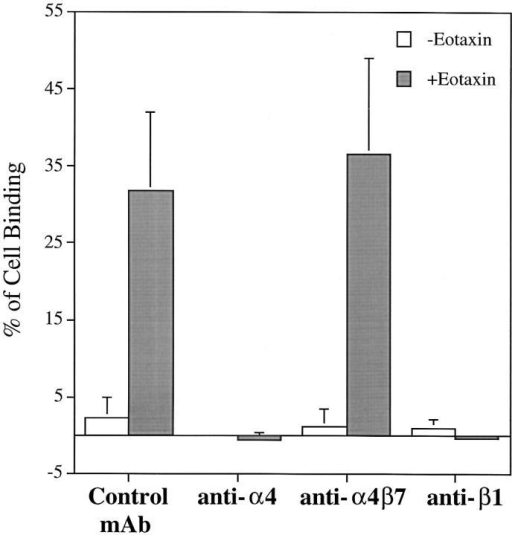 Effect of rh eotaxin on the adhesion of human eosinophils to  FN40 (30 μg/ml) in the presence of anti-integrin mAbs and control IgG  mAb. Isolated human eosinophils were incubated with mouse anti–human α4  (A4-PUJ1), anti–human α4β7 (Act-1), anti–human β1 (4B4) or IgG control mAb anti–human CD3 (HIT3a) for 10 min at 4°C before being assayed for adhesion with or without rh eotaxin (24 nM) in 96-well plates  coated with FN40 (30 μg/ml) for 15 min at 37°C. Data are presented as  mean ± SD of three independent experiments, each performed in triplicate.