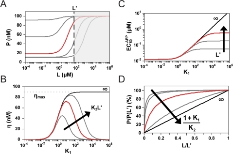 Placing an upper limit on the ligand concentration range alters the observed tuning properties.(A) Placing an upper limit on the ligand concentration (L') restricts access to the full response curve. This limit affects the dependence of (B) the dynamic range (η) and (C) the apparent EC50 (EC50APP) on the conformational partitioning constant (K1) and the aptamer association constant (K2) as demonstrated for a thermodynamically-driven riboswitch. The maximum dynamic range (ηmax) is proportional to the difference between regulatory activities for conformations A (KA) and B (KB) normalized to the respective degradation rate constants kdMA and kdMB. (D) Normalized response curves for fixed L' and increasing values of (1+K1)/K2, which equals EC50 under ligand-saturating conditions. Parameter values are identical to those reported in Figure 2 with L' = 60 µM.