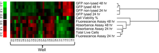 Heat map of data from the secondary SE optimization. Data has been standardized, with colors indicating high and low values. As seen on the scale, red indicates a high value relative to the mean of the individual data set, while green indicates a low value relative to the mean of the individual data set. Well H2 represents the best combination of GFP fluororescence, cell number, and cell viability.