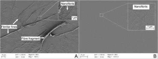 Microfibrillated cellulose suspensions dried on glass slides. (A) MFC obtained by mechanical homogenisation. Note the relatively large structures remaining after a homogenisation process. The inset shows structures composed mainly of nanofibrils. (B) MFC obtained with TEMPO-mediated oxidation as pre-treatment and mechanical homogenisation. The inset shows the nanofibrils having relatively homogeneous sizes. Both MFC materials (A and B) have been collected after passing five times through the homogeniser, at 1,000 bar.