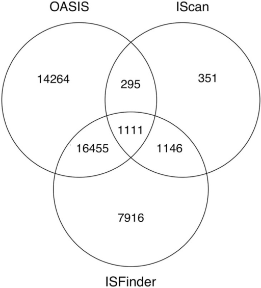 Venn diagram illustrating the identified number of ISs in ISfinder, OASIS and IScan. OASIS found a total of 37 427 ISs (in copy numbers) in the 1319 benchmarked genomes while IScan only found 2902 ISs, demonstrating a better performance of OASIS over IScan. In addition to identifying 18 112 ISfinder elements, OASIS found 19 365 new ISs, indicating the advantage of OASIS in finding novel ISs.