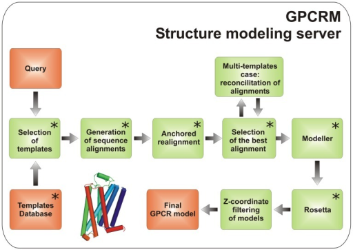 The GPCRM modeling pipeline.A human intervention is possible in the 'Advanced' user mode at the steps indicated by asterisks.
