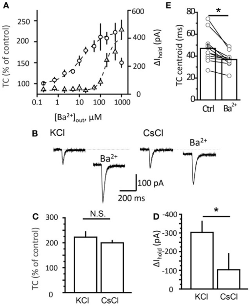 Potentiation of transporter current is independent of Kir blockade. (A) Dose-response curve of TC (circles) and Δ Ihold (triangles) changes. (B) Transporter current (TC) elicited by local glutamate uncaging in control and in 200 μM Ba2+. The downward shift in the holding current was less pronounced in Cs+-loaded cells (CsCl). The TC amplitude increased to a similar degree in both cases. (C,D) Mean Ba2+ effect on transporter current (TC, B) and Ihold (Δ Ihold, C) for CsCl- and KCl-based intracellular solutions. (E) Transporter current centroids in control and in 20 μM Ba2+. Error bars—SEM. *P < 0.05; N.S.—non significant; paired (E) and unpaired (C,D) t-test.