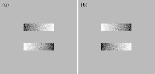 Sample stimulus pairs with opposite orientations from the greyscales task. Both a and b are 400 pixels long, but stimuli a is positioned with the upper stimulus dark on left and lower stimulus dark on right where as stimuli b is positioned with the upper stimulus dark on the right and lower stimulus dark on the left. A left response results from the participant choosing the stimulus with the darker feature on the left, irrespective of whether the stimulus is on the top or bottom