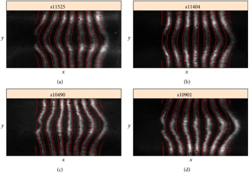 "Four cases of the 3D geometry of eve expression stripes. Stripe 4 can be a forward ""C""-shape (a), straight (b), a negative ""C""-shape (c), or ""S""-shaped (d). BDTNP embryo IDs are given on the images."