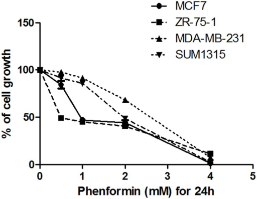 Phenformin induces cell death of breast cancer cell.Cells were grown for 24 hours in the presence of the indicated concentration of phenformin. CCK-8 assays were performed to evaluate cell viability. The absorbance was measured at 450 nm using an automated microplate reader. The percent growth inhibition was calculated using the following formula: (OD of the control-OD of the experimental sample)/OD of the control×100%.