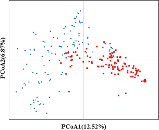 Plot of the first two PCoA axes using the 2811 SNPs.The red squares correspond to waxy maize germplasms; the blue rhombuses correspond to common maize germplasms.