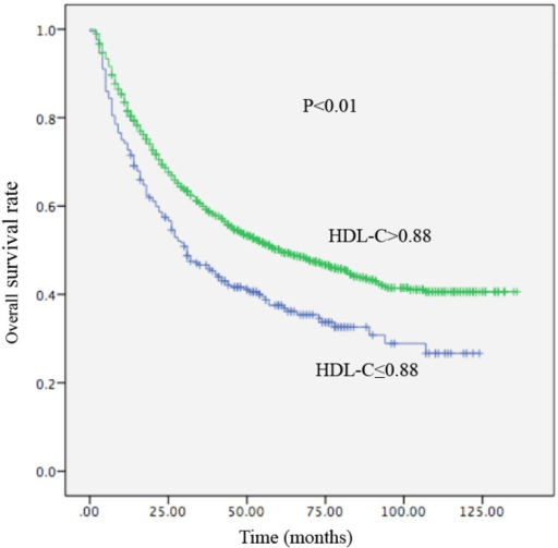 Kaplan-Meier curve for overall survival regarding low vs high HDL-C levels (P <0.01).