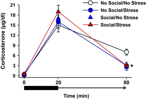Serum levels of CORT under baseline, stress, and poststress conditions. There were no significant between‐group differences in CORT measures at baseline or after a 20‐min restraint stress period. At the 60‐min postrestraint time point, the No Social/Stress group exhibited significantly lower CORT levels than all three other groups. Data are shown as mean CORT (μg/dL) ± SEM. *P < 0.05 relative to No Social/No PTSD.