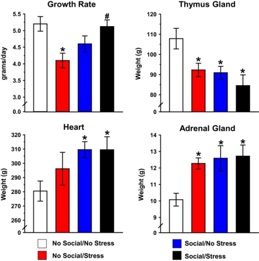 Influence of psychosocial stress on growth rate and organ weights. Psychosocial stress produced a significant decrease in growth rate. This effect was prevented in the Stress/Social group. Data are shown as mean g/day (upper left). Mean thymus gland weight was significantly lower in both Social groups and Stress/No Social relative to the No Social/No Stress group (upper right). Social stimulation produced a significant increase in mean heart weight relative to home cage controls (lower left). Both Social groups and No Social/Stress groups demonstrated robust increase in mean adrenal weight relative to home cage controls (lower right). Organ weights are shown as mean mg/100 g body weight. *P < 0.05 relative to No Social/No Stress. #P < 0.05 relative to Stress/No Social.