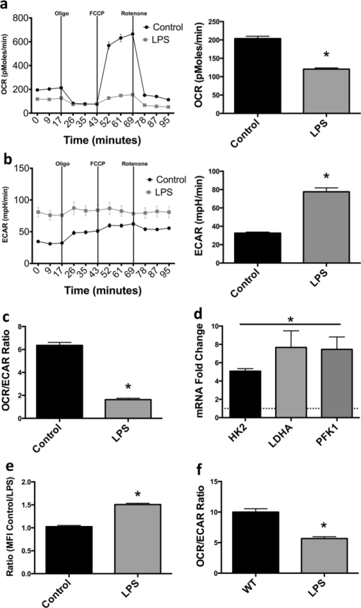 Prolonged stimulation of macrophages with LPS leads to glycolytic commitment. OCR, ECAR and OCR/ECAR ratio of mouse BMDM 24 h after LPS administration (100 ng/mL) (a–c). mRNA levels of glycolytic enzymes HK2, LDHA, and PFK1 were evaluated 24 h after LPS administration to BMDM in which the dotted line indicates control levels (d). Glucose uptake in LPS treated macrophages (24 h) was assessed by fluorescent 2-NBDG (100 μM) uptake via flow cytometry (e). OCR/ECAR ratio was evaluated in human MDM 24 h after exposure to 100 ng/mL LPS (f). Metabolic data (a–c, f) are from one experiment representative of at least 3 independent experiments (mean±SEM n=5). mRNA analysis (d) is a combination of 2 independent experiments (N=5). 2-NBDG analysis (e) is a combination of 3 independent experiments *p <0.05. Statistical significance was assessed by Student's t test.
