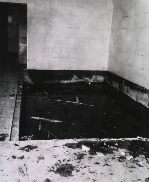<p>Interior view: Debris is floating in several inches of water.  The word &quot;west&quot; is written on the left front corner of the pit.</p>