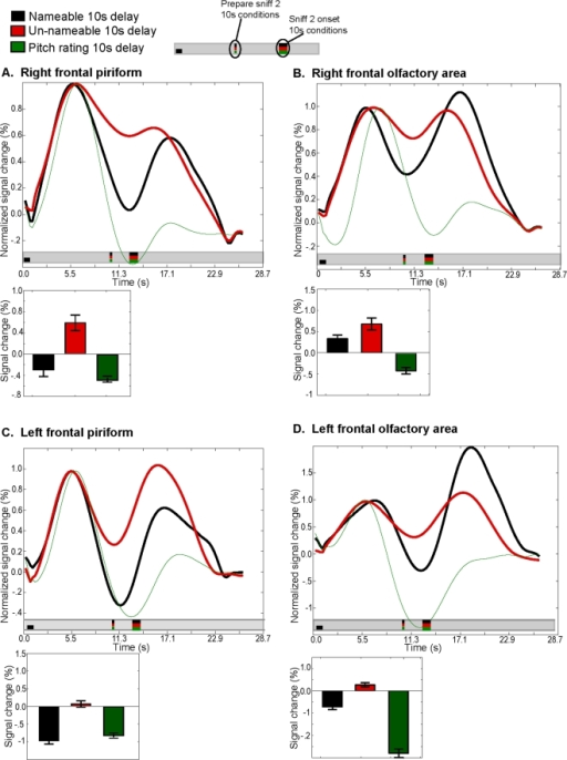 Memory-related activity in piriform cortex.Each panel shows the time course of activity that has been normalized such that the maximum response to sniff-one is equal to 1. This enabled comparisons of activity levels during the delay period. Only the nameable (in black) and unnameable (in red) 10-second-delay conditions are shown along with an additional control condition in which subjects remembered auditory pitches (in green) for 10 seconds. Bar graphs depict the minimum activity level from 6-seconds after the first sniff to the time that the subject was instructed to prepare for the second sniff. This provides a measure of how well activity levels were sustained during the delay (note that because the bar graphs in this figure depict the minimal value, the bar may reveal a negative value even when the mean was positive, e.g., black line in panel A). A. Memory-related activity in right frontal piriform cortex. B. Memory-related activity in right frontal olfactory area. C. Memory-related activity in left frontal piriform cortex. D. Memory-related activity in left frontal olfactory area. In all subregions, the level of activity during the delay period was greater when subjects were remembering unnameable odorants as compared to nameable odorants. In the olfactory area, activity levels were hierarchically organized in the following manner: unnameable>nameable>auditory pitch. In frontal piriform cortex, remembering unnameable odors elicited more activity than nameable odors, but remembering nameable odors and auditory pitches both elicited a similar level of activity during the delay (unnameable>nameable = auditory pitch).