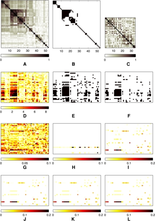 Results from the association analysis of the asthma dataset.(A) The correlation matrix of 53 asthma-related clinical traits. A pixel at row  and column  corresponds to the absolute magnitude of correlation between node  and  in the QTN depicted in Figure 1. (B) The trait correlation matrix thresholded at . The black pixels in the lower triangular part of the matrix indicate edges between each pair of traits. (C) The matrix of  shows the linkage disequilibrium structure in the 34 SNPs in gene IL-4R. (D)  from single-marker/single-trait association tests after 2000 permutations. (E) The SNP-trait pairs that the single-marker/single-trait analyses with permutation tests in (D) find significant at  are shown as black pixels. (F) The SNP-trait pairs with significant association at  based on the  in (D) are shown as black pixels. Estimated  are shown for (G) ridge regression, (H) PCA-based regression, (I) lasso, (J) , (K) , and (L) . In Panels (D)–(L), rows correspond to SNPs, and columns to phenotypes.