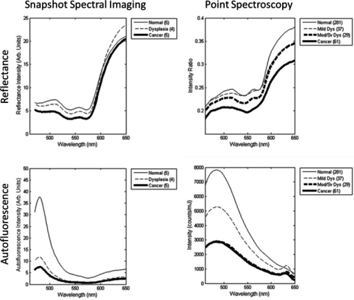 Comparison of average spectra for different histopathological diagnoses. Data is shown for snapshot spectral imaging (left) and point spectroscopy from a previous clinical trial of 408 sites (right). All sites were nonkeratinized.