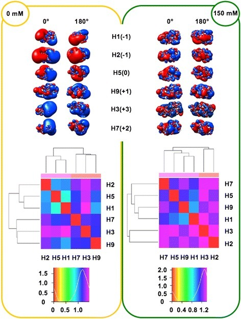 Isopotential contours (top), heat maps (middle) and density plots (bottom) of HA RBDs. See Figure 1 caption for color code and definitions. Isopotential contours are plotted at ±1kBT/e.