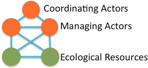 The fully connected five-node governance motif (assuming the coordinating actor is not directly connected to the ecological resources)