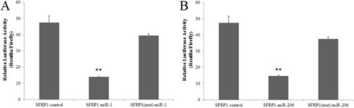 Validating SFRP1 as a positive target for miRNA-1 and miRNA-206. Cotransfection of porcine pre-miRNA-1 (A) and pre-miRNA-206 (B) or control and porcine SFRP1 UTR-derived psiCHECK-2 construct or mutant in PIEC cells. Renilla activity at 48 h post-transfection shows a significant decrease in normalized values compared with the control and mutant. Three replicates were performed for each group. **Indicates a p-value of less than 0.01 in Student's t-test.