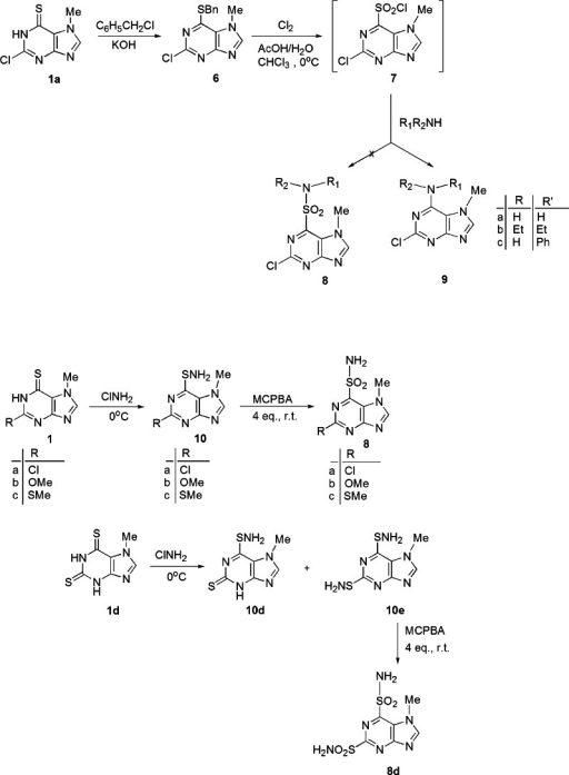 Synthesis of amine 9, sulfenamide 10, and sulfonamide 8 derivatives of purines