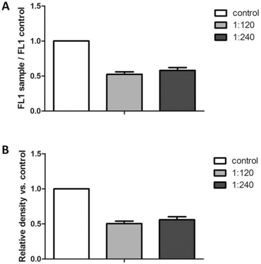Intracellular ROS levels (panel A) and carbonylation of total proteins (panel B) of A375 melanoma cells treated with Rosmarinus officinalis extract.(A) Cells were incubated with 1:120 and 1:240 dilutions of the rosemary extract for 24 h. ROS production was evaluated as CM-H2DCFDA fluorescence. Values are expressed as relative fluorescence of treated samples as compared to control ones and are the mean ± SD from three independent experiments. *P≤0.05 versus vehicle treated control cells. (B) Carbonylation was evaluated by derivatization of extracted proteins with 2,4-dinitrophenylhydrazine, SDS-PAGE separation and immunoblotting with anti 2,4-dinitrophenylhydrazone antibodies. Values are expressed as relative optical density of treated samples as compared to control ones and are the mean ± SD from three independent experiments. *P≤0.05 versus vehicle treated control cells.