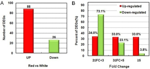 Analysis of differentially expressed genes (DEGs).(A) Numbers of up- and down-regulated genes between red- and white-fleshed fruits at the ripe stage. (B) Distribution of fold changes (FC) for up- and down-regulated genes at the ripe stage.