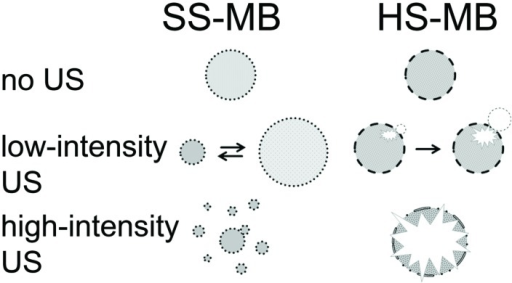 Behavior of SS-MB (lipid) and HS-MB (polymer) at different US intensities (modified from Hernot and Klibanov, 2008).