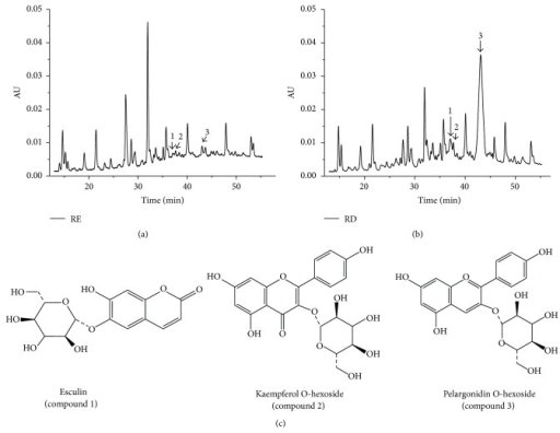 HPLC chromatograms of raspberry extracts produced before and after simulated gastrointestinal digestion. (a) Chromatogram of RE. (b) Chromatogram of RD. (c) Chemical structures of identified compounds.