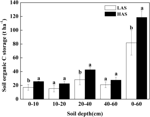 Comparison of SOC storage in the different soil layers between two elevations.LAS: low-altitude site; HAS: high-altitude site.