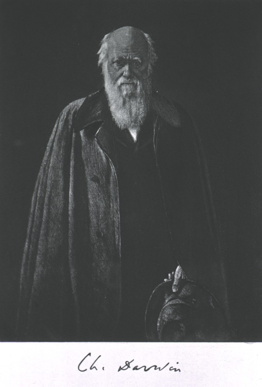 <p>Three-quarter length, standing, full face, holding hat in left hand, wearing overcoat; as an old man.</p>