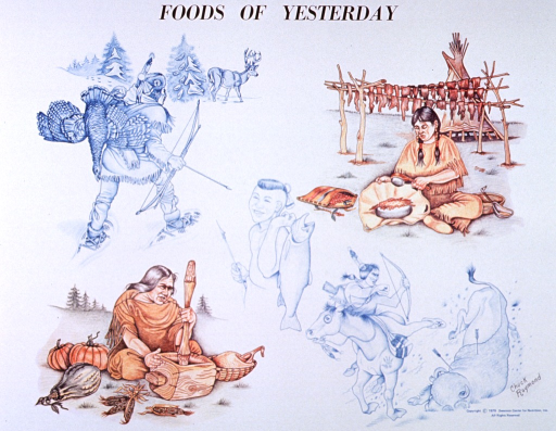 <p>White poster with black lettering.  Title at top of poster.  Visual images are five reproductions of hand drawings, each depicting a type of healthy food.  First drawing shows a man hunting with a bow and arrow.  He has a turkey or similar large bird on his back and he walks toward a deer.  Second drawing features a woman pounding seeds.  Central drawing is of a young man with a fish hook in one hand and a large fish hanging from the other hand.  Drawing in lower left corner shows a woman grinding corn, with several gourds nearby.  Drawing in lower right corner depicts a man riding a horse.  The man has shot a buffalo with an arrow.  All are in Native American dress. Artist's signature below the buffalo.</p>