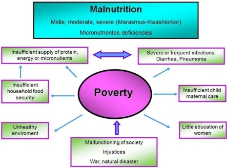 What are the main causes of poverty