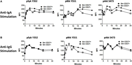 Time course of phosphorylation of BCR-associated signaling proteins in Sm CD27+ and Sm CD27− B cells following anti-IgA and anti-IgG stimulation. Anti-IgA and anti-IgG stimulated PBMC were assayed for phosphorylation of Syk, Btk, and Akt (A and B, respectively) at different time points (1, 2, 5, 8, 10, 15, 20, and 30 min).