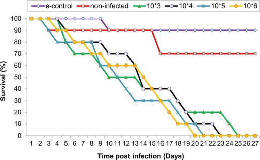 Survival of locusts given various doses of Neospora caninum tachyzoites by the intra-hemocoel route.Groups (G1 to G4) of locusts (n = 10) were administered doses of N. caninum of 103 (G1), 104 (G2), 105 (G3), and 106 (G4) per locust. Control locusts were sham-inoculated with RPMI cultured medium. An environmental control group (e-group) of non-infected locusts incubated under the same conditions as other groups was also included. Survival was monitored daily after infection. Results represent average survival curve based on three independent experiments. Control vs. G1 (p = 0.0008); control vs. G2 (p = 0.0007); control vs. G3 (p = 0.0004); control vs. G4 (p = 0.0047). Locusts inoculated with 10 or 100 tachyzoites did not exhibit any signs of sickness or mortality (data not shown).