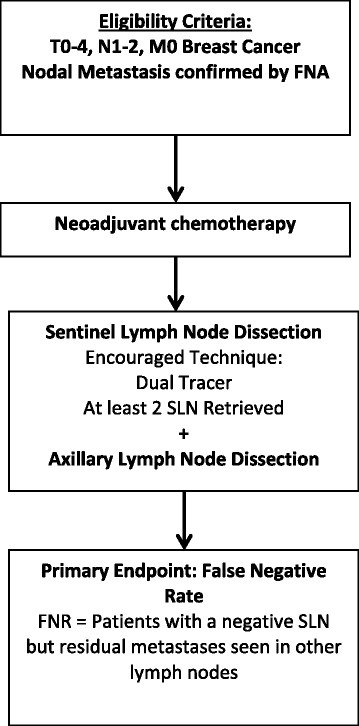 ACOSOG Z1071 Trial [7]. The ACOSOG Z1071 trial was designed to test the reliability of sentinel lymph node dissection to restage the axillary lymph nodes after neoadjuvant chemotherapy in patients presenting with clinically positive lymph nodes