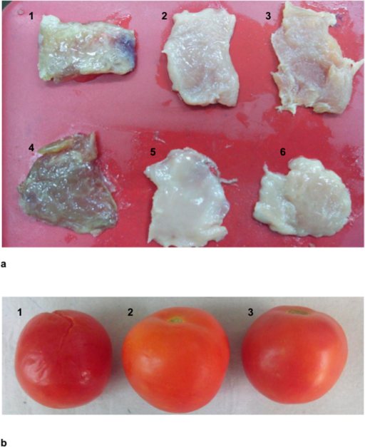 Preservative effect of coated LDPE film during the storage of (a) meat (b) tomatoes. (a) Meat samples were spiked with L. monocytogenes (1–3) and S. aureus (4–6). Spoilage of meat is visible in meat samples packaged in control LDPE films (1 & 4) whereas no spoilage was observed in samples packaged with sonorensin (2 & 5) and nisin (3 & 6) coated LDPE films. (b) Tomato sample (1) packaged in untreated LDPE films showed signs of spoilage in contrast to no spoilage in case of tomatoes packaged in sonorensin (2) and nisin (3) coated LDPE films.